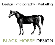Black Horse Design (South Yorkshire Horse)