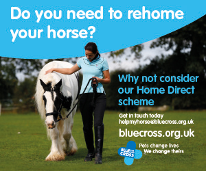 Blue Cross 2020 A (South Yorkshire Horse)
