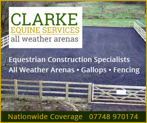 Clarke Equine Services 2019 (South Yorkshire Horse)