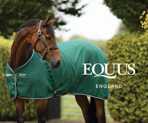 Equus (South Yorkshire Horse)