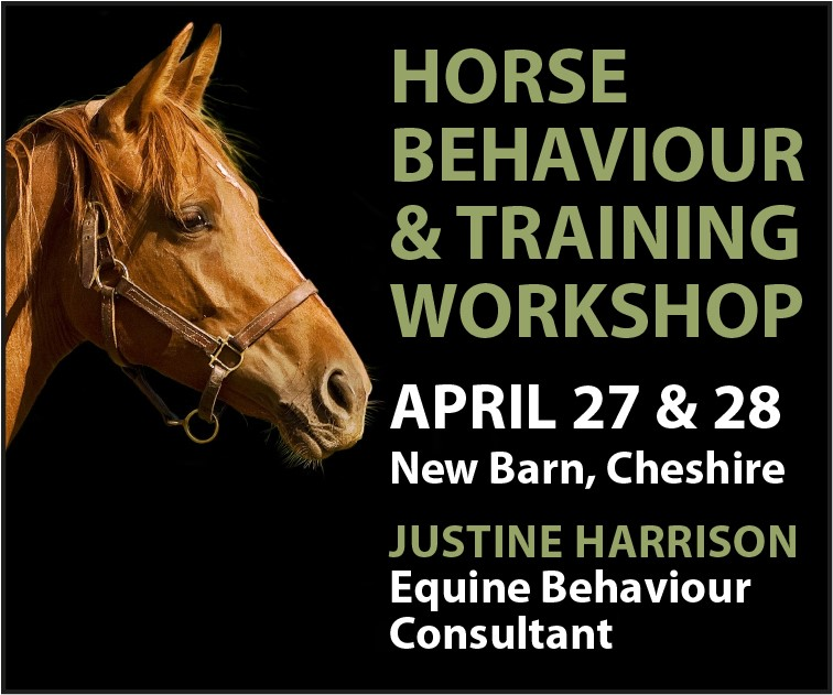 Justine Harrison Workshop April 2019 (South Yorkshire Horse)