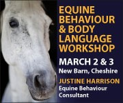 Justine Harrison Workshop March 2019 (South Yorkshire Horse)