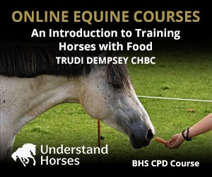 UH - An Introduction To Training Horses With Food (South Yorkshire Horse)