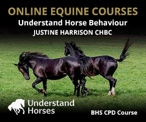 UH - Understand Horse Behaviour (South Yorkshire Horse)